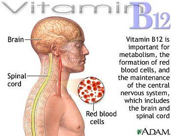 Is light headedness connected with vit B12 deficiency?