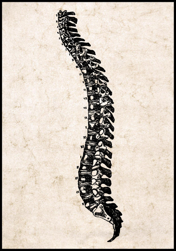 How often is paralysis certain after spinal cord injuries?