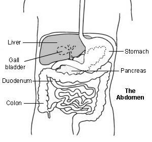 Why would your liver area feel like a burning with fatty liver from being obese? I am losing weight.