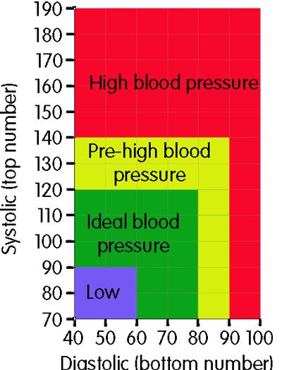 What is the average 14 year old male's blood pressure?
