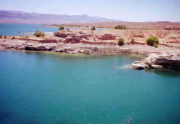 I went cliff jumping in lake mead. Water was 88 deg. I plugged my nose, but water still got through. How paranoid should I be about naegleria fowleri?