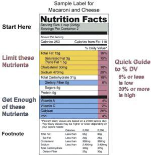 What are the parts of a nutrition label?