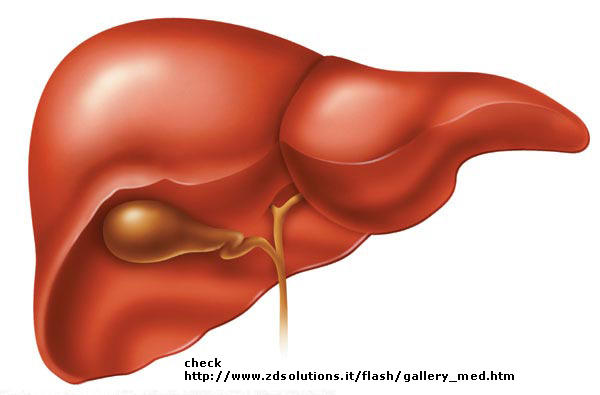 I'm chronic hepatitis b carrier. I tried treatment but no avail. What're chances of getting liver failure or cirrhosis?
