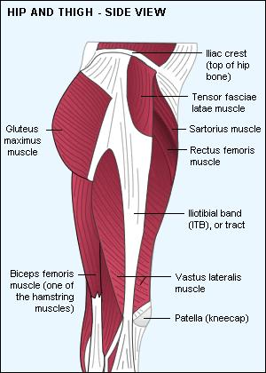 What causes my  legs  to clamp  and hurts   in the hip  and thigh area?