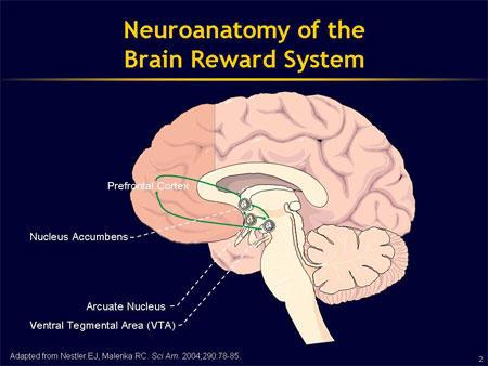 how to get the dopamine j