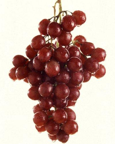 Can grapes give you constipation?