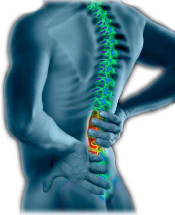 What could be causing debilitating lower back pain that occurs early in the morning? Also accomodated by nausea.