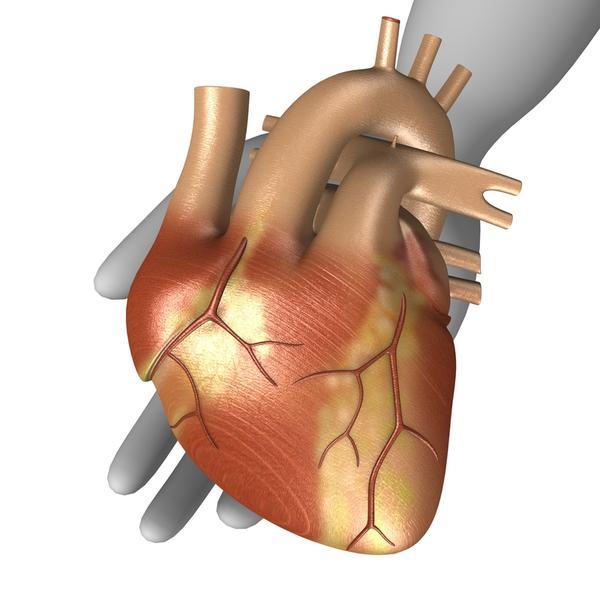 How common are pulmonary flow murmurs?