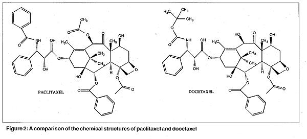 What is the difference between Taxol and taxotere (docetaxel)?