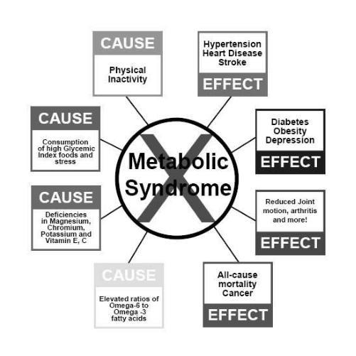 What's the difference between cardiac dysmetabolic syndrome and metabolic syndrome?