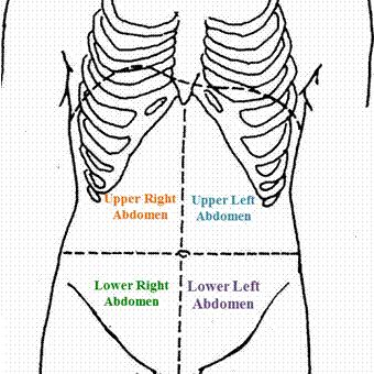 Best What Does Pain On Left Side Of Stomach Mean Doctor