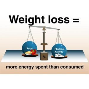 """What are """"automation"""" and """"adjustment"""" as keys to weight loss?"""