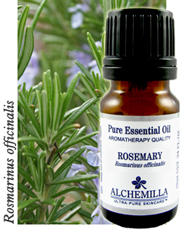 How is rosemary essential oil used?