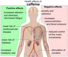 Can you drink caffeine on antibiotics?