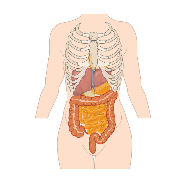 I take codeine60mg but find that I get very bound up in both the small and large bowel. Can I take castor oil to help with the small bowel motility?