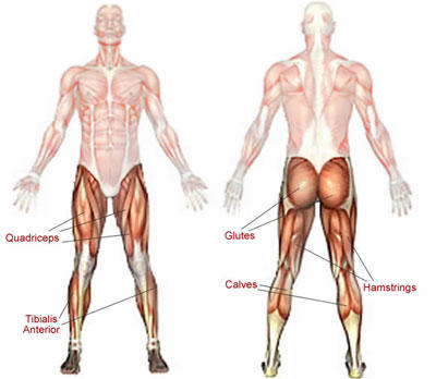 I have quick pains in long bones then all gone. No pain or discomfort after. Might be arm, or leg, might not happen for months or 2 in a day?