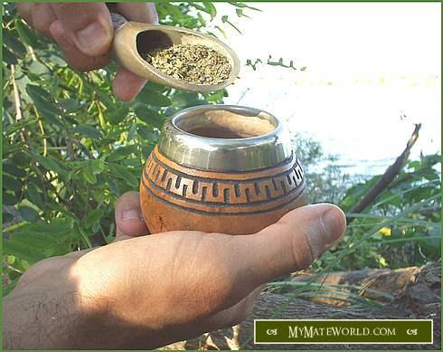 Is yerba mate safe to drink with healing lgs (leaky gut syndrome)?