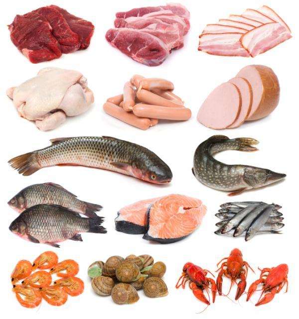 What are the best sources of vitamin b12?