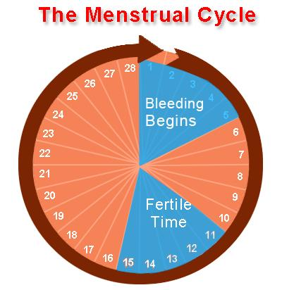 how to stop your period for 2 days