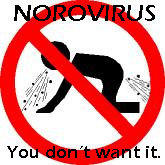 Hi I have a post norwalk virus syndrome which has lasted over two years.  I am in constant pain and have GI issues as well please help?