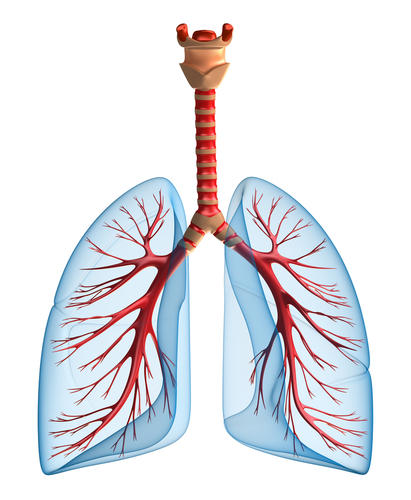 How do you treat pulmonary edema in a patient with pneumonia?