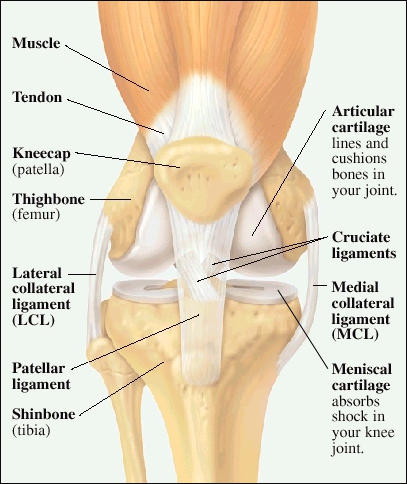 Why does my knee give out when I squat or bend  down?
