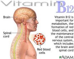 Can a vitamin B12 cause someonr to forget words?