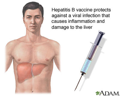 What does it mean to be hepatitis b virus carrier?