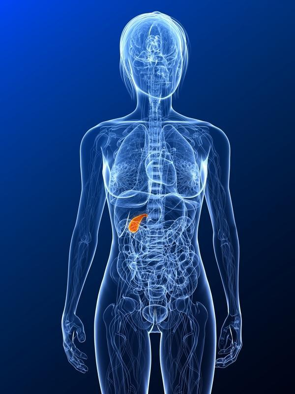Why is it that jaundice is a symptom of gallstones?