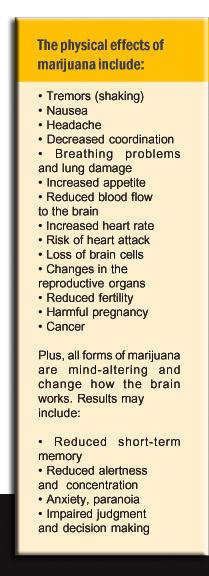 Does smoking marijuana increase or decrease heart rate?