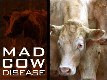 How can I avoid mad cow disease?