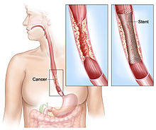 Dear doctor