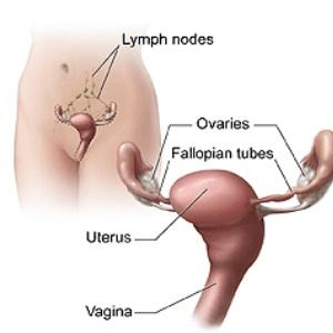 What would cause your fallopian tube to collapse?