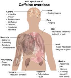 Can drinking too much caffeine cause reckless behavior?