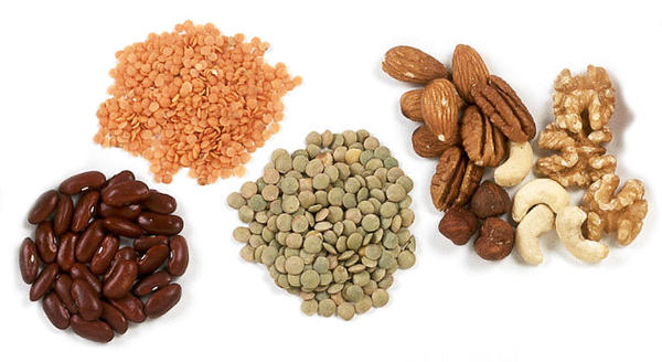 What are good sources of protein for a vegan?