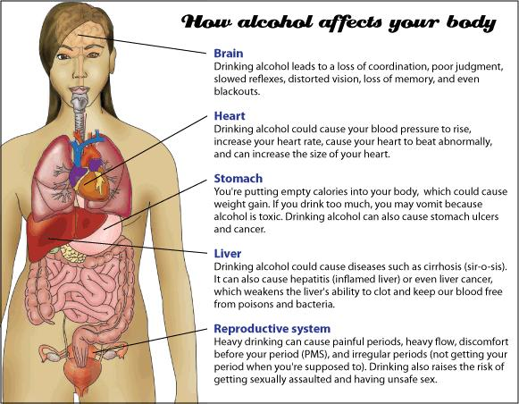 What are the effects of drinking alcohol on the body?
