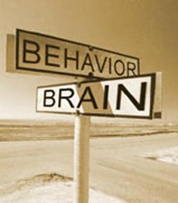 Does lovan (anti-depressent) cause behavioral changes?