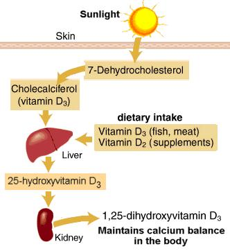 What is a low level of vitamin d?