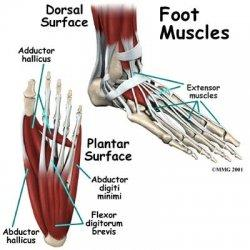 Do you ever fully recover from a foot injury? Cant stay off it.