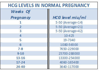 How rapid is rise in level of hCG in early pregnancy?