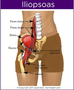 What are symptoms of having problem with psoas muscle?