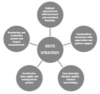 What is directly observed therapy (dot)?