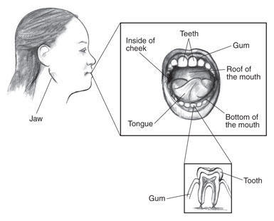 Does having enlarged tonsils related to having bad breath?