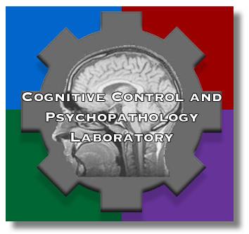 Does rage have similar traits as limbic psychopathology ?