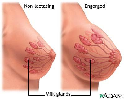 Sharp Breast Pain During Pregnancy - Doctor answers on HealthTap