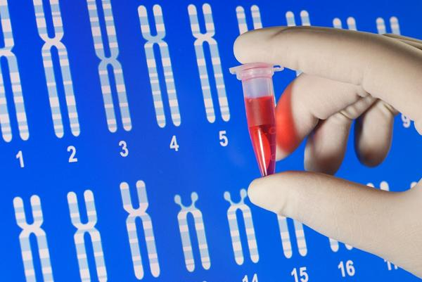 What type of mutation causes hemophilia?