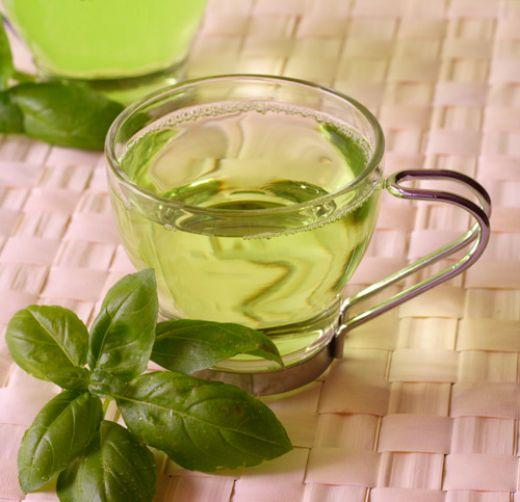 Can I drink green tea and take L-carnitine if im trying to get pregnant?