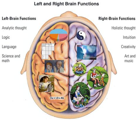 Birth Defects and Brain Development