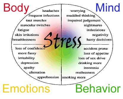 What are the effects of stress on my health?