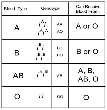 Different blood types chart - Answers on HealthTap